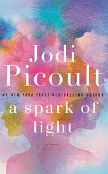 Audio Book : A Spark of Light by, Jodi Picoult