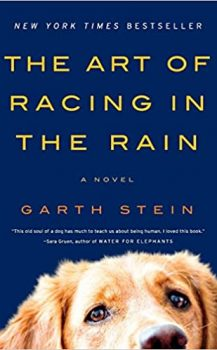 AudioBook : The Art of Racing in the Rain by, Garth Stein